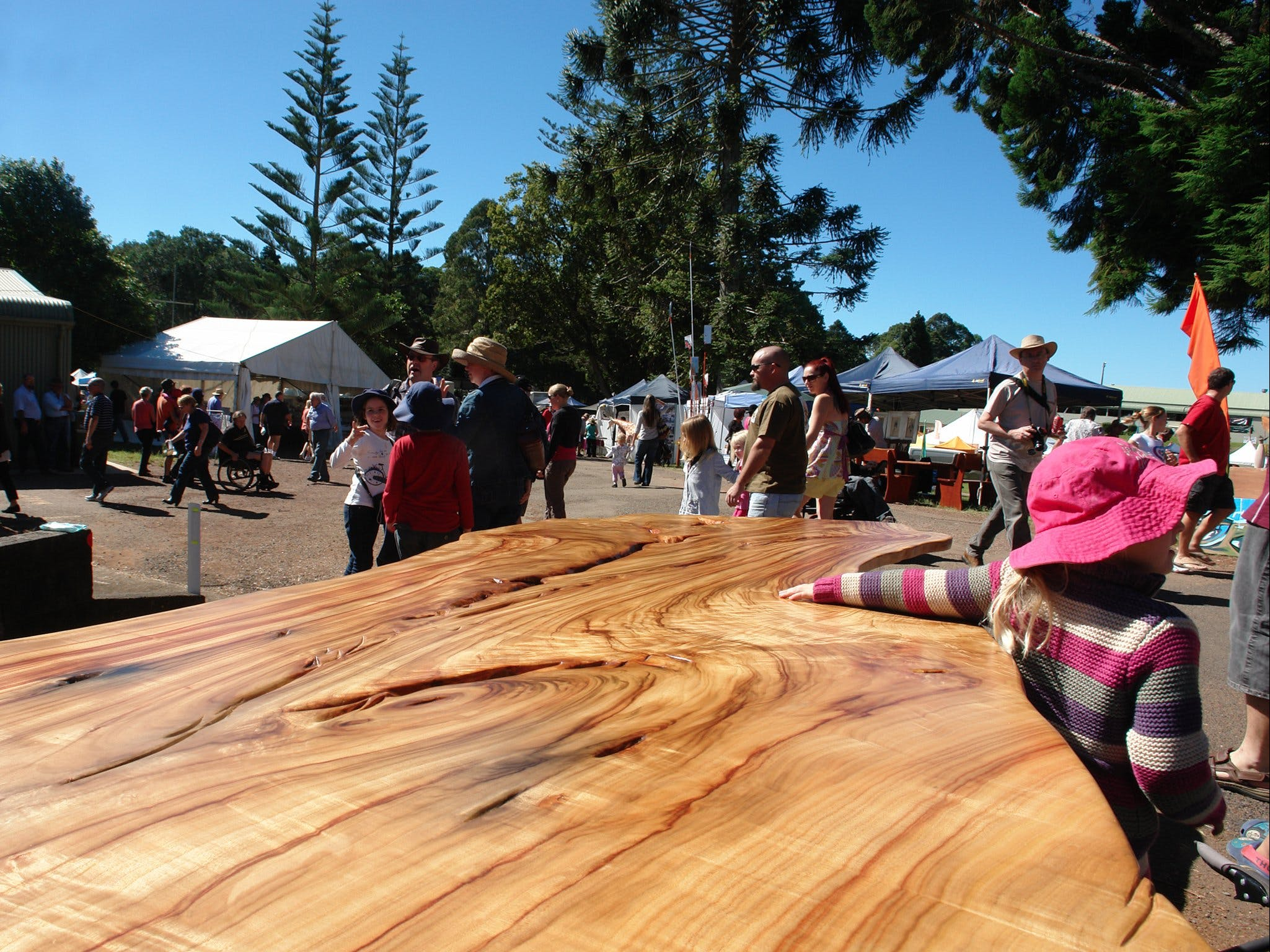 Maleny Wood Expo From Seed to Fine Furniture - Accommodation Australia