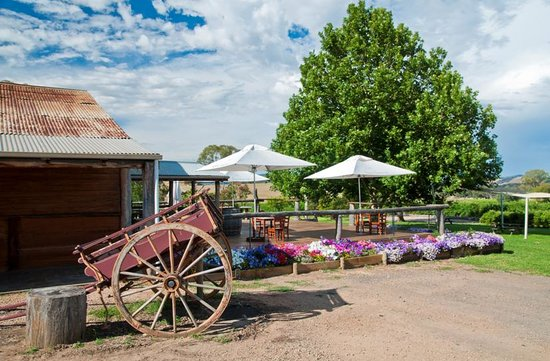 Gracebrook Wines - Accommodation Australia