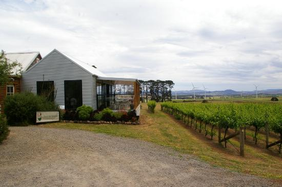 Quoin Hill Winery - Accommodation Australia