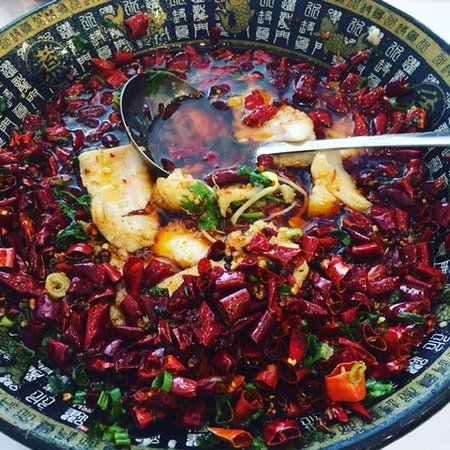 Red Chilli Sichuan Burwood - Accommodation Australia