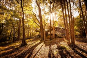 Riverglen Chalets - Accommodation Australia