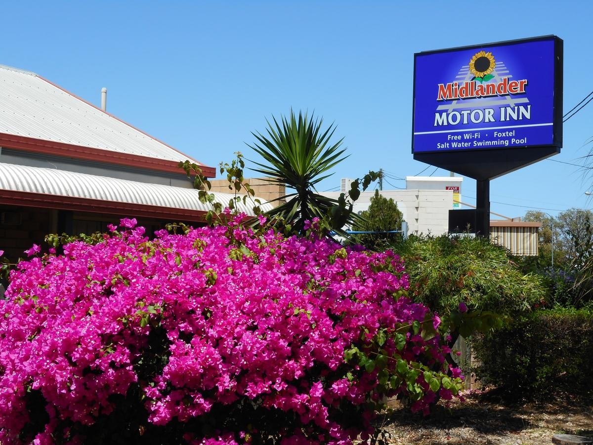 Midlander Motor Inn - Accommodation Australia